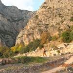 La montagne à Delphes