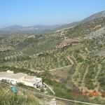 Vue depuis le site de Mycènes 1