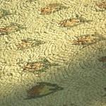 Restauration mosaïques (1)